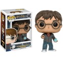 Figura Funko Harry Potter con la profecía with profecy Potter 10 cm Pop Vinyl