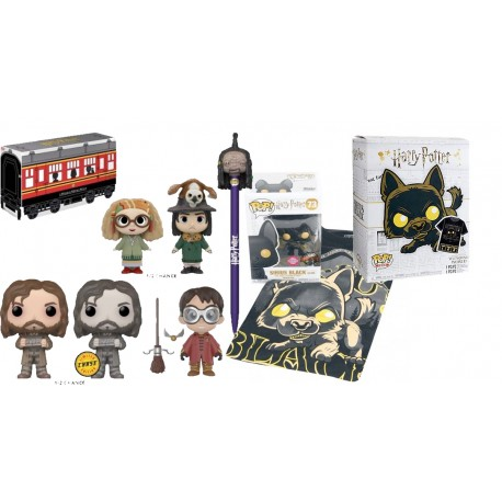 Pack Pop and tee Sirius Black Flocked Harry Potter Funko y caja exclusiva Hogwarts express